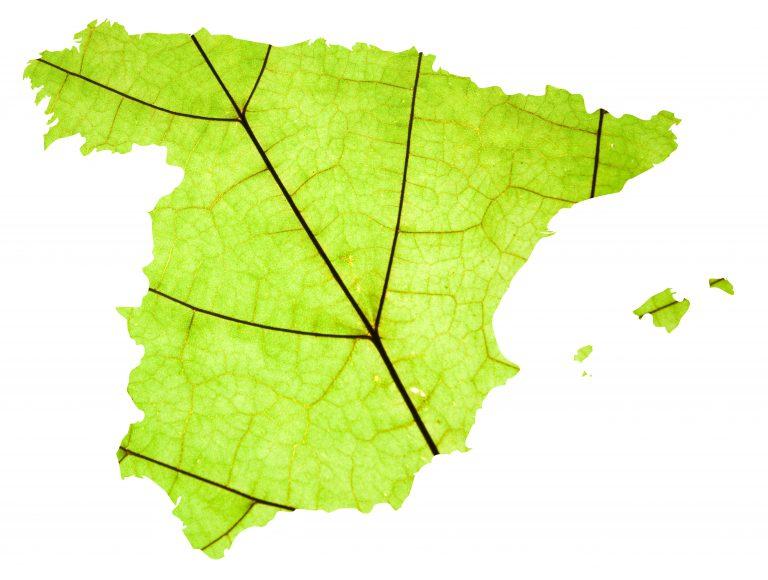 RAEE en España