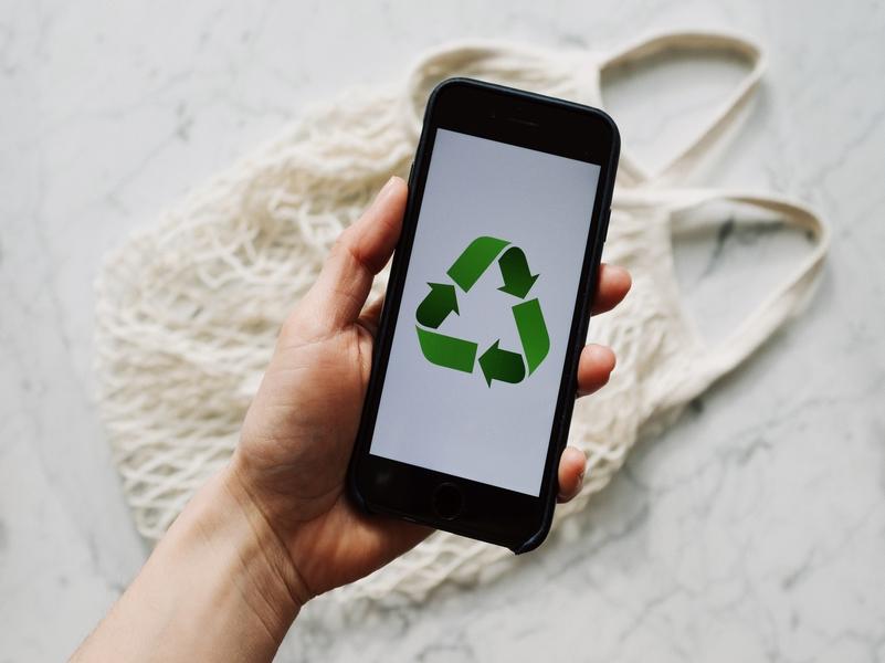 Reciclar es de sabios