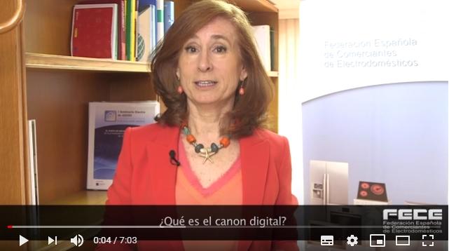 ¿Qué es el canon digital?